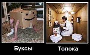 Буксы vs Толока